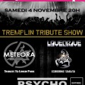 Tremplin Tribute Show
