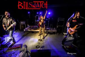 billsnatch